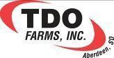TDO Inc