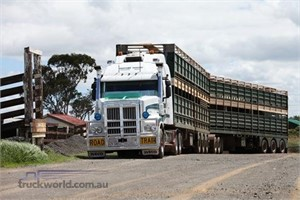 Cattlemans All Right is high praise for big Iveco Powerstar 7800