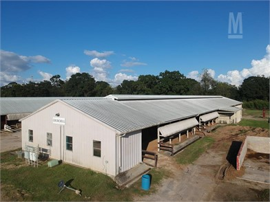 Approx 46' X 260' Wood Frame Building Buildings Auction