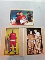 Vintage Nhl Hockey Photos Of Gordie