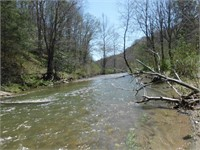 Ashe Co., Mountain Land with Trout Stream Auction