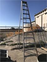12FT Heavy Duty Shop Ladder