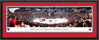 """WALL MOUNT PANORAMIC PICTURE ,18""""X 44"""""""