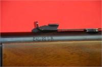 Henry Arms Lever 22 .22LR Rifle