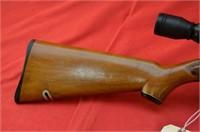 Sears 31 .22SLLR Rifle