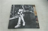 Neil Young Greatest Hits (Vinyl)