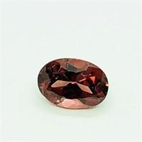 Genuine Garnet(1cts) (123 - JT58)