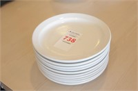 "10 pc ITI 7"" Plates"
