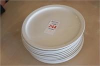 "10 pc ITI 9.5"" Plates"