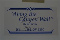 G. Harvey S/N Print Along the Canyon Wall