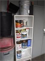 Shelf w/Asst Paint