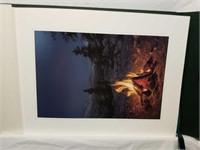 "Stephen Lyman""A Light in the Wilderness"" Portfolio"