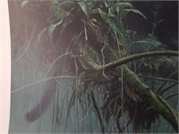 """Signed Robert Bateman """"Shadow of the Rainforest"""""""