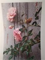 "Signed Carl Brenders ""Summer Roses - Wren"" Print"