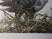 "Signed Robert Bateman ""At The Nest"" Print"