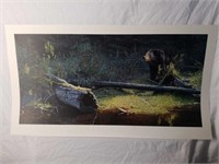 "Signed Brent Townsend ""Out of the Shadows"" Print"