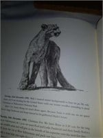 Simon Combes Great cats chronicle book