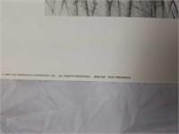 "Signed Rod Frederick ""Beeline"" Print #690/1000"