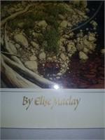 Bev Doolittle New Magic book by Elise Maclay