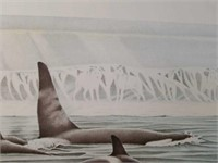 """Signed Diana Casey """"Arctic Knights"""" Print"""