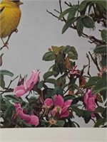 """Signed Terry Isaac """"Gold on the Rose"""" Print"""