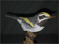 Signed Robert Nagel Golden Winged Warbler Statue