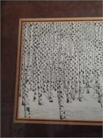 Framed Bev Doolittle Examination Proof Print