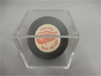 OFFICIAL NHL DETROIT RED WINGS HOCKEY PUCK / CASE