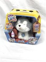 Wildcat Bargains Online Absolute Auction