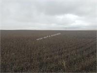 Irene Kruger Farm Land