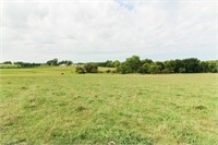 83.5 +/- Acres of Fenced Pasture
