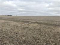 Posthuma Farm Land