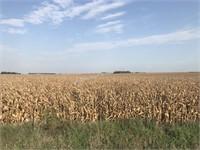 Koehlmoos Farm Land
