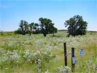 Kiowa County Kansas Land & Mineral Auction