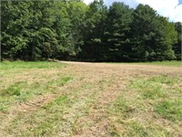 45.9 Acres - Hunting, Recreational, Residential Online Only