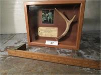 End of Summer Online Auction Tom Bean