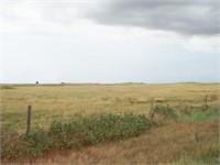 9/13 Evans Land