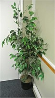 Artificial Ficus Plant in Pot