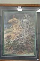 Bev Doolittle Framed Ltd Print