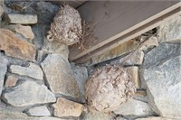 Pair of Hornets Nests- found art