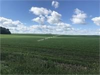 Fintel Farm Land