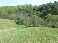 Ashe Co. Mountain Land 2 Auction