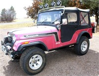 1975 Jeep Renegade (view 1)