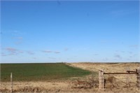 5/7 4- 80 ± Acre Tracts * Pasture * Cropland * Pond