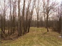 39 Acres Hunting Woods Blackash Algoma Wis