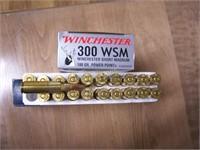 300 Ammo