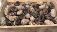 Wooden Crate full of pine cones