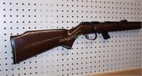 Remington 22 Rifle