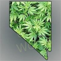 Cannabis Grow Facility –  Hydroponics Farming & Gardening