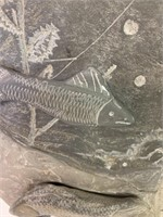 Slate Fish Scene From A Wall Mural